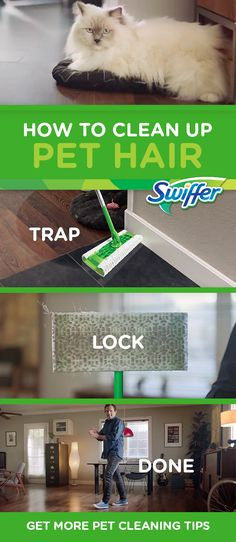 Cleaning up dog or cat hair can be a real pain. Learn helpful tips with Swiffer Sweeper and Dusters to clean up pet hair quick and easy.
