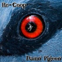♫ Re-Coop - Damn Pigeon. Wild Creatures, Magical Creatures, Pigeon Eyes, Peacock Eggs, Micro Photography, Fotografia Macro, Back Photos, Look Into My Eyes, Prehistoric Creatures