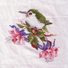 Hummingbird Cross-Stitch by Hannah Faye, via Flickr