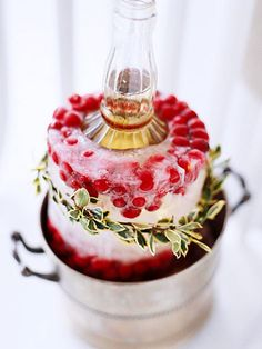 Icy Elegance - How to make this wine chilling ring.