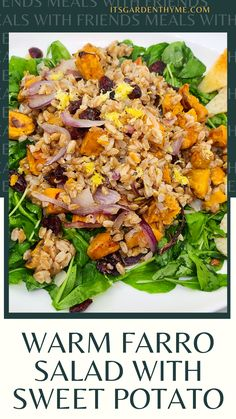 healthy and nutritious Farro Salad is perfect vegetarian meal or meatless monday recipe. This recipe is not only easy to make, but also full of distinct flavors and textures. It has hearty ancient grains and soft and sweet potatoes. deliciously warm Farro & Sweet Potato Salad recipe. Try this for a meatless Monday recipe or an ide on how to use Thanksgiving leftover ideas. Deliciously bright, flavorful and hearty, this is an excelled vegetarian recipe for lunch. a healthy, vegetarian warm…