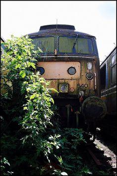 abandon train england