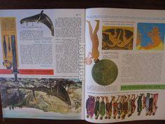 Enciclopedias de segunda mano: Enciclopedia Estudiantil Diseuropa 1962 Completa (209 Fasciculos) f3 - Foto 19 - 48072937