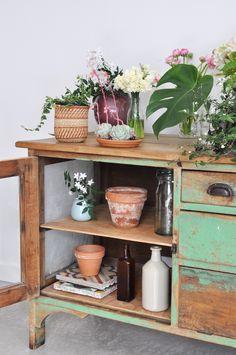 Urban Jungle Bloggers: Plants & Flowers by @styledcanvas