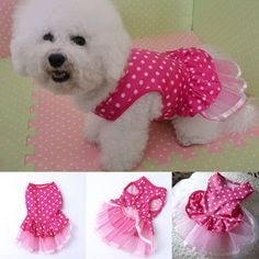 Pet Dog Cat Hot Pink Polka Dot Lace Dress Skirt Clothes Puppy Costume XS,S,M,L #Unbranded