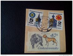 RARE 1974 Czechoslovakia 2 Ksc/5Ksc/40H DOG BARVAT RECOMMENDET LETTRE ON PAPER COVER USED SEAL - Czechoslovakia