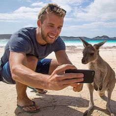 Kangaroo Selfie photo by @Trex.photography via @animalglobe by awesomedreamplaces https://www.instagram.com/p/_-EdnIFNrU/ via https://scontent.cdninstagram.com/hphotos-xft1/t51.2885-15/e35/12362340_1544927329131130_1442898206_n.jpg