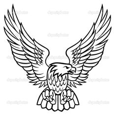 Eagle — Stock Vector © artcreator #4318560