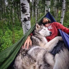Man Documents His Incredible Outdoor Adventures with His Gorgeous Wolfdog - My Modern Met#.Vfs9AsGStVQ.email#.Vfs9AsGStVQ.email