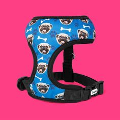 Fasten up your dog in style with the new Dogsy Harness. Dog walks ain't ever gonna be the same again! Unique Presents, Dog Walking, Dog Gifts, Walks, Your Dog, Dogs, Products, Style, Swag