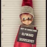 criminal elf