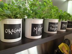 Grab a white pot, mask off the area that you want to use as a blackboard and paint with blackboard paint. Blackboard Paint, Chalkboard, White Pot, Herb Pots, Weekend Projects, Blackboards, Planter Pots, Herbs, Backyard