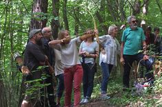 #archery #wildnisschule #naturbegegnungen #bogenschießen #bogenschiessen