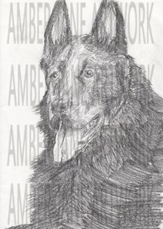 happy dog pencil sketch, print, instant download, wall art, home decor, art, A4, JPEG by AmberJaneArtwork on Etsy