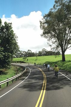"""Haleakala Bike Tour - The ride down the volcano is filled with the sites and smells of Maui and the fact that there is no peddling involved is a very special """"plus."""""""