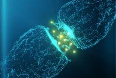 Dopamin macht glücklich, steigert die Leistungsbereitschaft und macht uns aktiv. Und wenn wir zu wenig davon haben, dann sind wir faul und antriebslos, hängen nur rum und sehen alles grau in grau. Bild:© psdesign1/Fotolia.com Geht es dir manchmalauch so? Duweiß ganz genau, was du im Interesse der Gesundheit besser machen solltest, kannst dich aber nicht