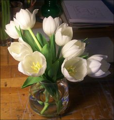 How to Paint White Tulips in Oil