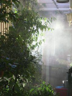 La terraza de Andrés, supernatural ;)