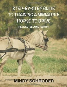 Step By Step Guide To Training A Miniature Horse To Drive: Second Edition
