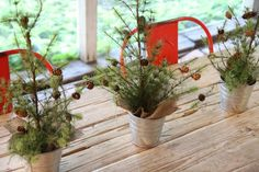 mini trees, lined with squares of burlap, in IKEA metal pots