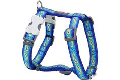 Red Dingo Designer Dog Harness, Medium, Paisley Green and Blue * Special dog product just for you. See it now! : Dog harness