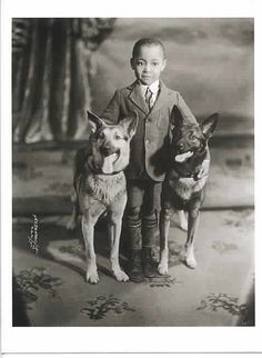 Lovely portrait of young boy and two German Shepherds.