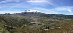 Mount St Helens 6/19/16. Complete with spring flowers fallen trees from the 1980 eruption and a rainbow over head from the snow glare. Arguably my best photo. [OC] [6192 x 2864]
