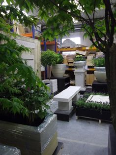 Our Chelsea Flower Show stand in build up stage and nearing completion..