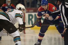 Worcester Sharks forward Freddie Hamilton eyes the puck for a face-off (April 12, 2014).
