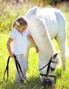 top spot on häst