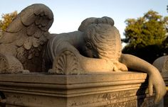 This is the Weeping Angel in Friendship Cemetery in my home town of Columbus, Ms