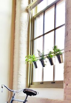 Tension Rod Uses. A pretty touch for a sunny window! A super simple herb garden using a tension rod and some IKEA buckets and clips. Garden Projects, Diy Projects, Small Space Gardening, Indoor Gardening, Vegetable Gardening, Gardening Tips, House Windows, Do It Yourself Home, Home Organization