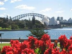 Royal Botanic Gardens Sydney - Bing Images