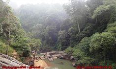 Kanthanpara Waterfalls Creek Kalpetta