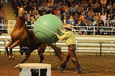 How to solve spooking in horses - Creating Positive Behavioral Changes - by Linda Parelli