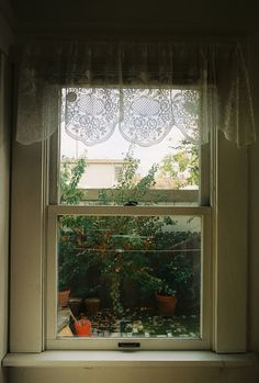 window view with lacy curtains. Window View, Window Art, Open Window, Lace Curtains, Window Curtains, Window Coverings, Window Treatments, Ventana Windows, Cottage Windows