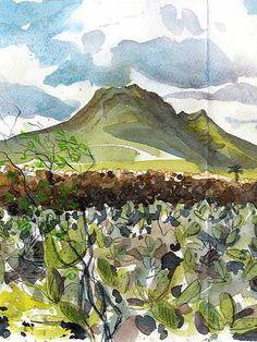 Sketching in Lanzarote: Day 12. Volcanoes & Cacti