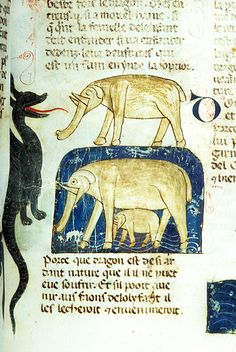 Bestiary, MS M.459 fol. 21r - Images from Medieval and Renaissance Manuscripts - The Morgan Library & Museum