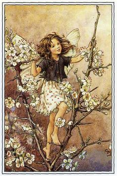 by Cicely Mary Barker