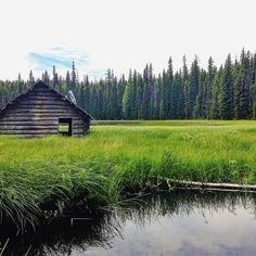 Stumbled upon this abandoned cabin in the middle of Sisters Wilderness. Love finding hidden treasures while out exploring! || follow us @Jordan & Lilly | Backpacking + Budget + Healthy Travel for more adventures ||