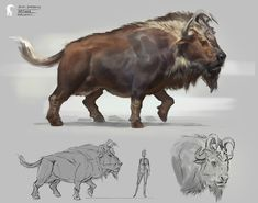 Critter design Bison Imperator / King Bison, colors inspired by Black wildebeest and Indian Gaur. Alien Creatures, Wild Creatures, Fantasy Creatures, Mythical Creatures, Extinct Animals, Prehistoric Animals, Creature Concept Art, Creature Design, Creature Drawings