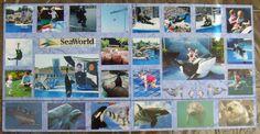 Sea World Collage - Scrapbook.com