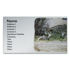 Deer in the Wild Business Card  printed on a silver colored background.  Other colors available.