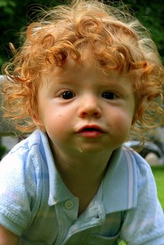 baby red head! Omg look at those curls! If my boy doesn't have curls I'm going to be mad