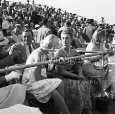 Stephen Sanford, C.Z. Guest and Barbara Hutton sitting in the stands of a polo club, Delray Beach, 1953.  Photo by Bert Morgan.
