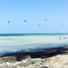 """Repost from Instagram ! #WeLike ! #Madinina by @b52kitesurfing """"#Caribbean #kiting! Posted by @martiniquelifestyle: """"Bon dimanche  #martiniquelifestyle #martinique #madinina #972 #fwi #martiniquetourisme #martiniquemagnifique #ig_martinique #ig_caribbean #ig_caribbean_sea #ig_worldclub #beach #islandlife #island360 #wind #sun #plage #instabeach #vauclin #pointefaula #kite #kitesurf #sunday #sundayfunday #dimanche #weekend"""" ... And in #StMartin come for #Kiteboarding lessons with…"""
