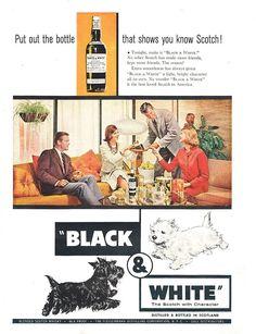 Whitey On Blackey