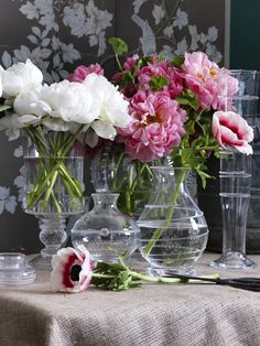 Various Juliska glass vases holding our favorite vibrant pink and white flowers.