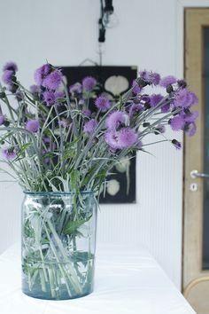 Varpunen: Kylän edullisin kukkakauppa