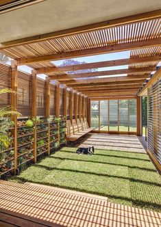 simple front yard landscaping ideas with pictures, large wooden structures, small ceramic pots with succulents, grass patch Futuristic Home, Front Yard Landscaping, Landscaping Ideas, Backyard Privacy, Front Yard Design, Shade Structure, Pergola Plans, Diy Pergola, Pergola Shade